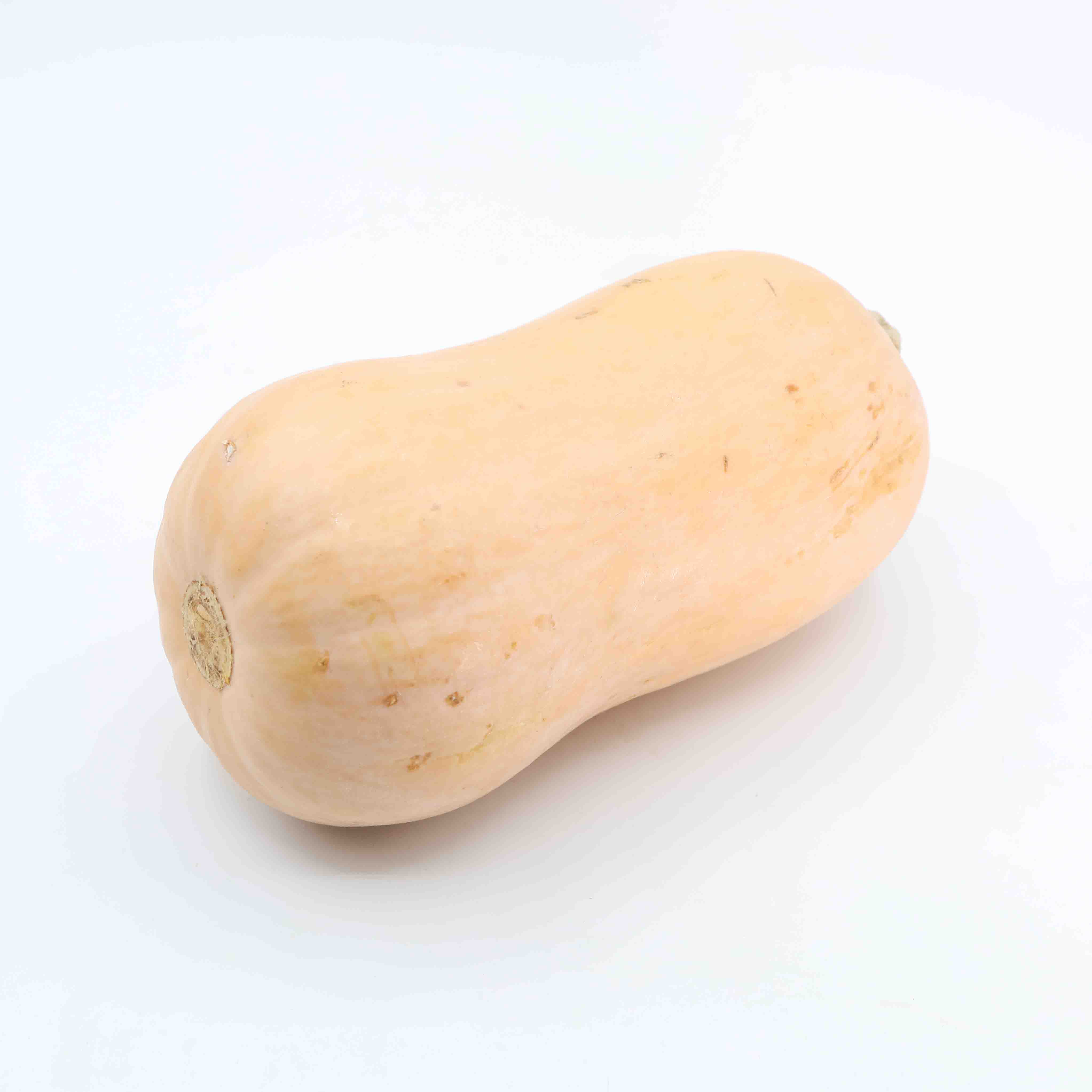 Courge Butternut vrac Image