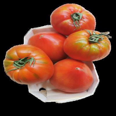 Tomate Cuor di bue Image